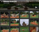 """Bilder vom """"Blühenden Barock"""", 2015"""