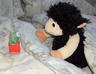 Bob und der Frosch