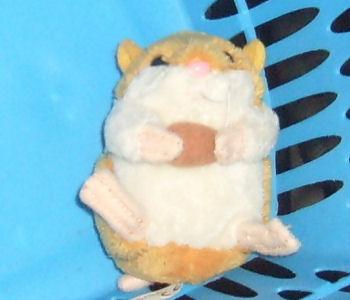 hamsterkauf5