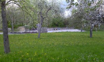 Sweet Home Diezenhalde - Spielplatz gegenüber