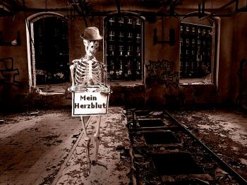 skelett-herzblut