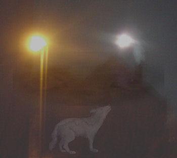 Die Nacht des Werwolfes