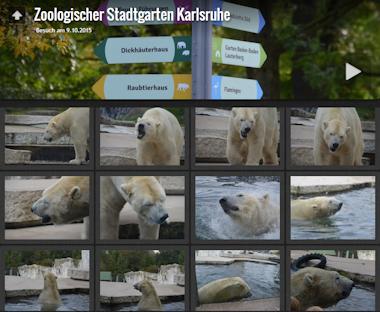 zoo-karlsruhe-2015